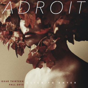 adroit+13+cover